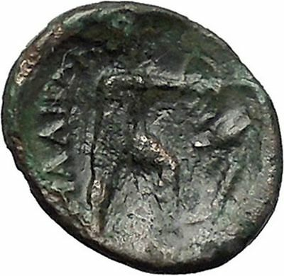 LAMIA in THESSALY 325BC Athena Philoktetes Trojan War Archer Greek Coin i49223