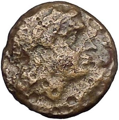 Authentic Ancient Greek City Coin 350-200BC APOLLO Cult Horse  i50265