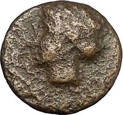 Authentic Ancient Greek City Coin 300-100BC APOLLO Cult Lyre i50278