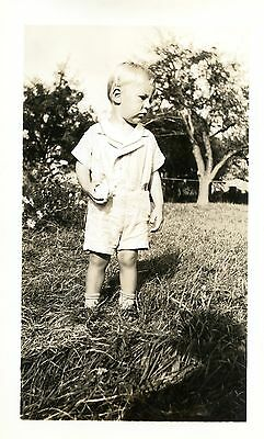 Old b/w photo young boy in apple orchard blonde