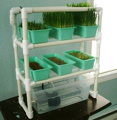 Complete Micro Hydroponic Fodder Kit for your Backyard Flock!