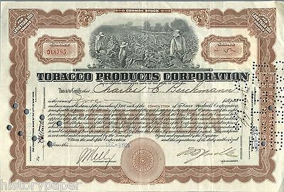 USA TOBACCO PRODUCTS CORPORATION stock certificates SET OF 3