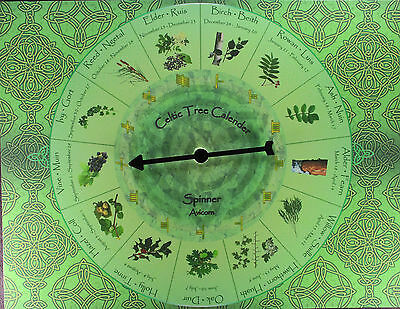 CELTIC TREE CALENDAR SPINNER Divination Fortune Telling Game Oracle Ogham Pagan