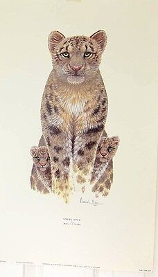 Poster Size Print-Warwick Higgs COOL CATS (leopard or Cheetah with 2 babes)