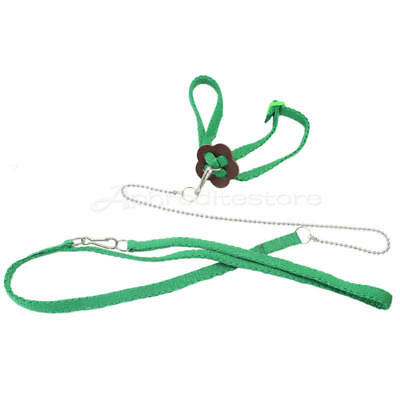 Adjustable Parrot Bird Harness for Birds Training Leash Playing ap7e