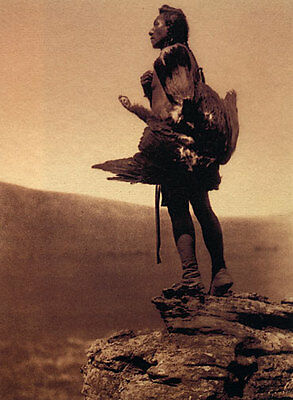The Eagle Catcher 15x22 Edward Curtis Native American Art Hand Numbered Edition