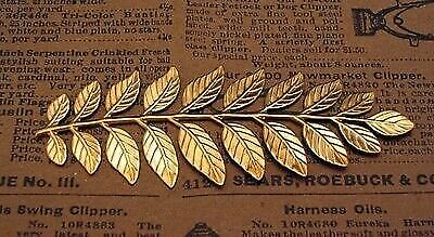 Large Raw Brass Branch Stamping (1) - S2969 Jewelry Finding