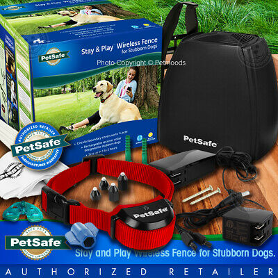 PetSafe Stay and Play Wireless Fence for Stubborn Dogs PIF00-13663