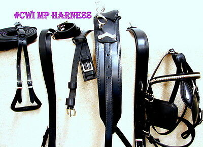NEW! Heavy Duty Leather Horse Driving Cart Buggy Harness - BLACK - Full Set