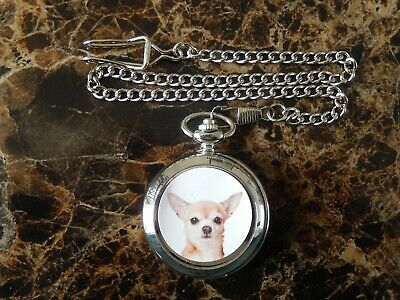 Chihuahua Dog Chrome Pocket Watch With Chain (New)