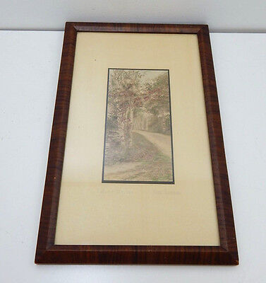 Autumn Birches By Fred Thompson Hand Colored Vintage Framed Photo