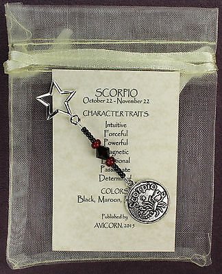 SCORPIO ZODIAC CHARM Amulet Astrology Stars Sun Signs Planets Horoscope Traits