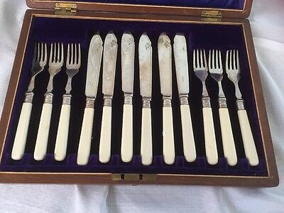 Vintage Cutlery  Set In Box Fish Knives And Forks With Faux Bone Handles