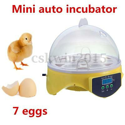 Mini Digital Eggs Incubator Kit For Hatching 7 Eggs Chicken Duck Reptile AC 220V