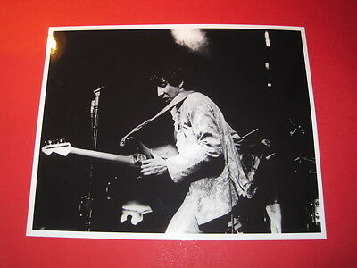 THE WHO  10x8 inch lab-printed glossy photo P/3124