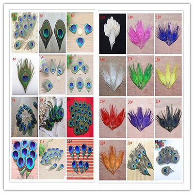 wholesale 10/20/50/100 PCS beautiful peacock feather eyes DIY 5-30cm/2-12inches