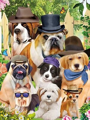 3D Lenticular Picture Puppies Dogs In Hats Size 39x29cm approx New