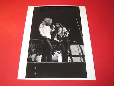 LED ZEPPELIN  10x8 inch lab-printed glossy photo P/3494