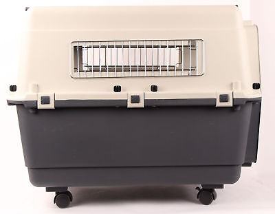 """32"""" Plastic Airline Approved Travel Carrier Pet Crate - Dog Cat Small Animal"""