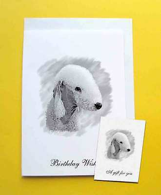 Bedlington Terrier Dog Birthday Card With Gift Tag with choice of 5 verse