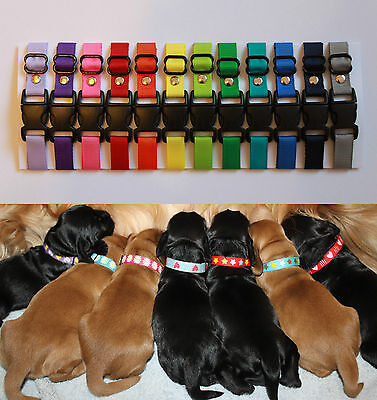 Sets of Puppy ID Whelping Collars Plain Choose Your Own Colours for your Kit Box