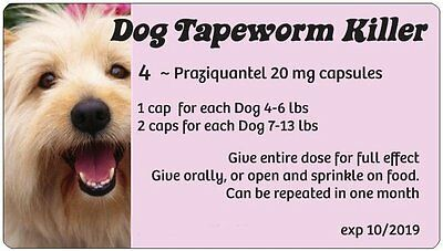 Tape Worm Medication ~ 20 Pink caps Generic Droncit, can treat 10-20 Small Dogs