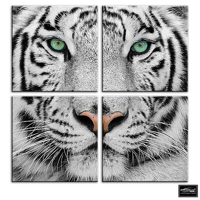 Siberian Tiger Eye   Animals BOX FRAMED CANVAS ART Picture HDR 280gsm