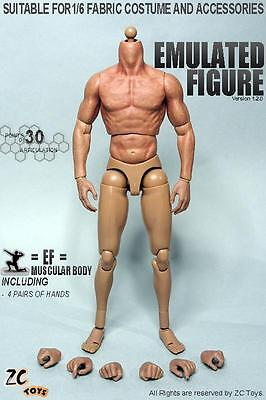 IN STOCK ZC Toys 1/6 Scale 2.0 Muscular Figure Body FOR  Hot Toys TTM19
