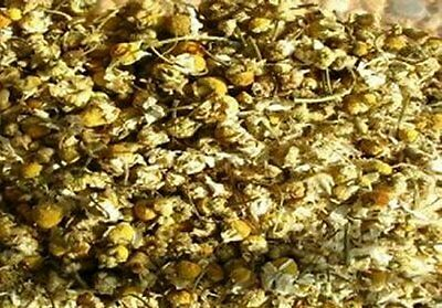 Dried Chamomile 25g Soap & Candle Making