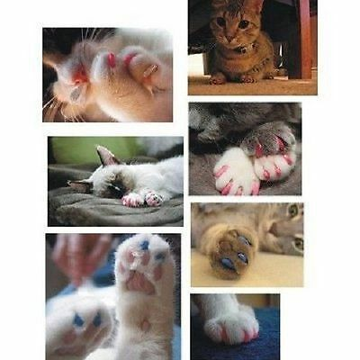 40 Soft Cat Nail Caps for Cat Claws + Adhesive + Tips + BONUS Item *USA SELLER*