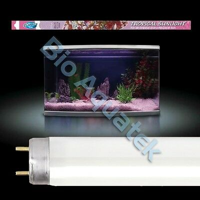 Arcadia Classica T8 Fluorescent Aquarium Lamp / Bulb / Tube - Tropical Sunlight