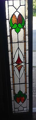 Rare Old Narrow Tall Stained Glass Colored Buffalo Window