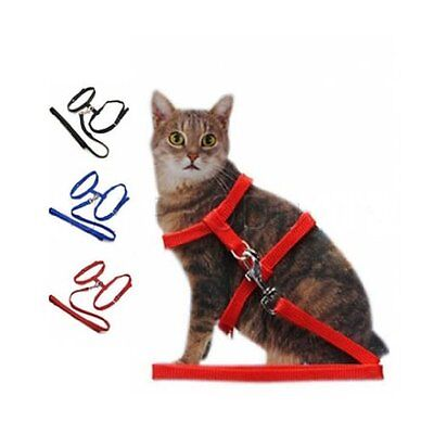 Cat Harness Pet Lead Leash Collar Black Blue Red Pet Collar Pet Accessories