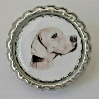 Pointer Dog Show Ring Clip by Curiosity Crafts