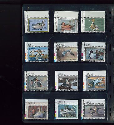 FEDERAL DUCK STAMP COLLECTION #RW39-62 Mint, F-VF, NH - BBB