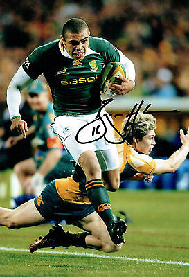 Bryan HABANA South Africa Rugby Springboks Signed Autograph 12x8 Photo AFTAL COA