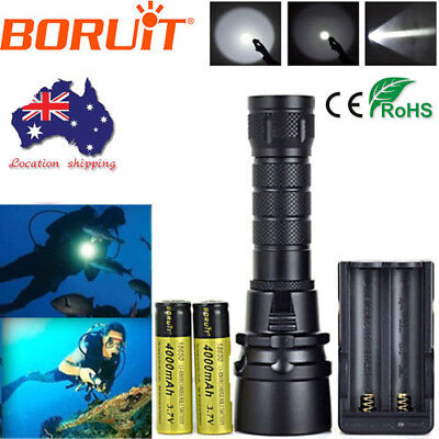 Diving 8000lm XML2 LED Flashlight Scuba Torch Underwater 100m Lamp+18650+Charger