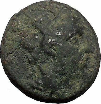 Apameia in Phrygia Ancient Greek Coin Artemis Diana Cult Satyr Marsyas i50347