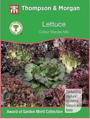 Thompson & Morgan - RHS Vegetables - Lettuce Colour Shades Mixed - 300 Seed
