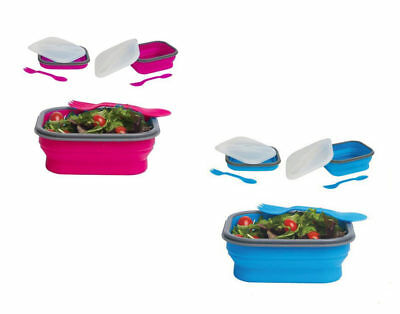 DCI Collapsible Lunch Box (Assorted Colors)