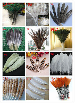 Wholesale 10-100PCS 10-65cm/4-26inches Pheasant tail & Goose feather  DIY