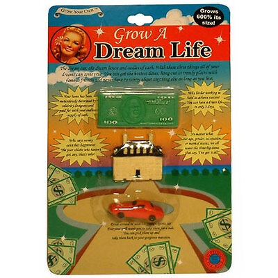 Novelty GROW A DREAM LIFE Fun Toy Birthday Christmas Secret Santa Gifts For Her