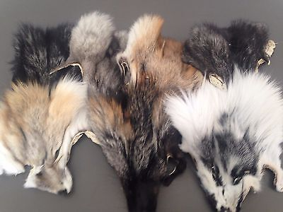 Fox Fur masks heads - Silver, frost, Blue, Red, Gold - FREE SHIPPING WORLDWIDE