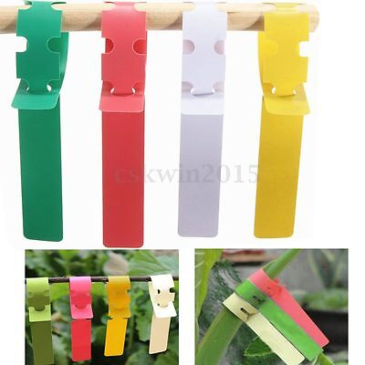 100pcs Garden Plant Plastic Tied Tags Markers Labels Blank Display Flowers Pot