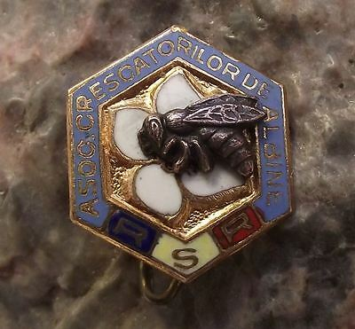 RSR Honey Bee Keeping Association Romania Hexagon Honeycomb Members Pin Badge