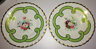 "Beautiful Pair Hand Painted English Floral Flower 9.75"" Plates Dish England"
