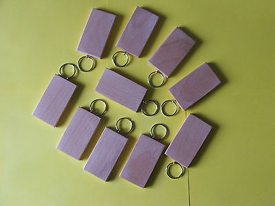 50mmx30mm Sycamore KEYRING BLANKS,PYROGRAPHY,ENGRAVINGetc.12 FOR £7-99INCpost