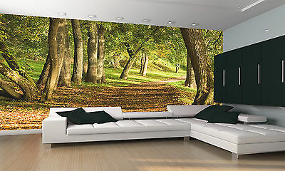 Photo Wallpaper  Fall Path in Forest  GIANT WALL DECOR PAPER POSTER FOR BEDROOM