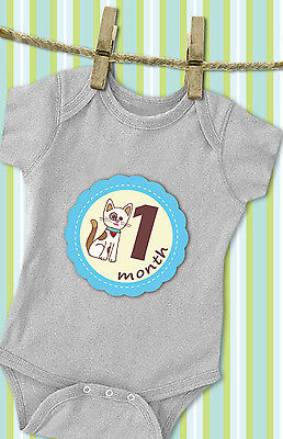 'MuchMore' Monthly Baby Stickers for Boy, Milestone's Stickers ,Onesie Stickers