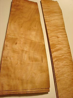 CONSECUTIVE SHEETS OF QUILTED MAPLE  VENEER 32 X 133 CM QMS#2 MARQUETRY